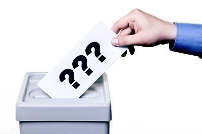 Ștefan cel Mare și Mihai Viteazul nu se pișă pe vot